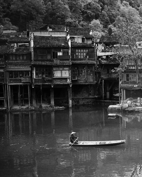 Fenghuang 2019