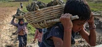 Trabajo infantil y capitalismo - Viento Sur